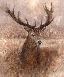 Noble by Gary Benfield - Limited Edition on Canvas sized 26x33 inches. Available from Whitewall Galleries